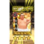 「大相撲ごっつぁんバトル」イメージ