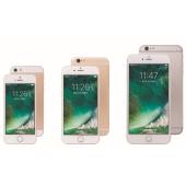 「iPhone SE 16GB(ゴールド)」「iPhone 6s 16GB(ゴールド)」「iPhone 6s Plus 64GB(シルバー)」