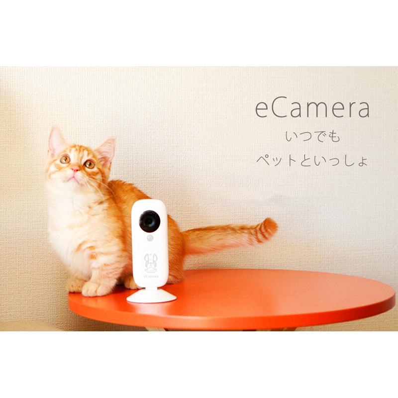 eCamera