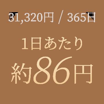 31,320円/365日、1日あたり約86円