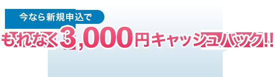 今なら新規申込でもれなく3,000円キャッシュバック!!