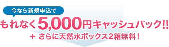 今なら新規申込でもれなく5,000円キャッシュバック!!さらに天然水ボックス2箱無料!