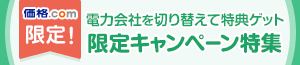 ���i.com���� �d�͉�Ђ��ւ��ē��T�Q�b�g ����L�����y�[�����W