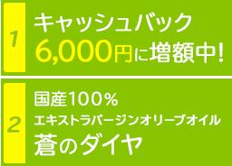 1.キャッシュバック 6,000円に増額中! | 2.国産100% エキストラバージンオリーブオイル 蒼のダイヤ