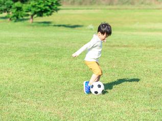 スポーツなど動きの速い被写体を捉えて撮影しやすくなる