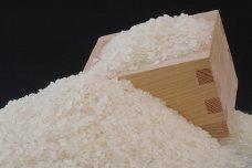 清水さんのお米(こしひかり)
