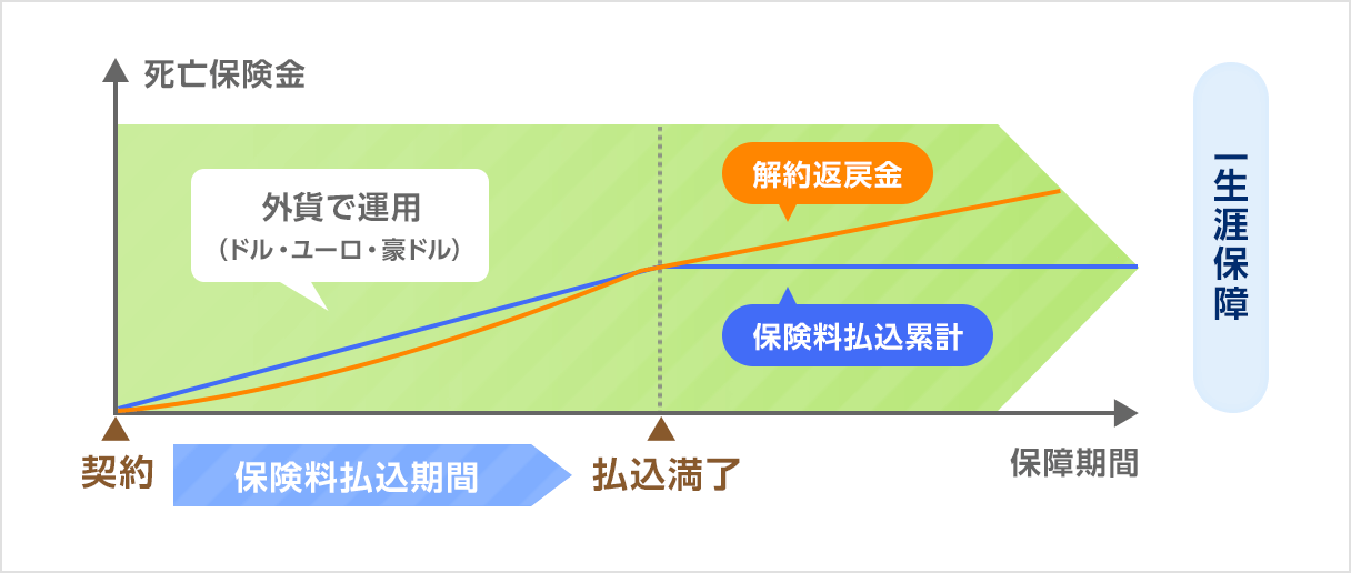 外貨建て商品の仕組み図