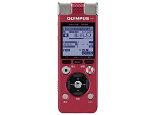 ボイストレック DS-800 RED [レッド]