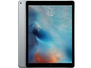 △ML0F2J/A [スペースグレイ] iPad Pro Wi-Fiモデル 32GB