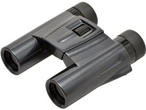 ウルトラビューパステルプラス 10x25DH UPP1025BK [ブラック・・・