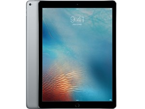 iPad Pro Wi-Fiモデル 256GB ML0T2J/A [スペースグレイ]