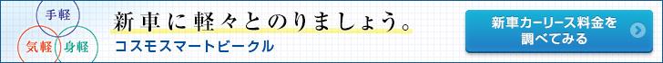 �R�X���X�}�[�g�r�[�N�� �V�ԃJ�[���[�X�����ׂĂ݂�