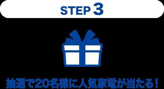 Step3 ���I��20���l�ɐl�C�Ɠd��������I