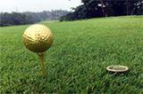 """ピッカピカ! 金沢の""""金箔""""が施された「金の玉」でゴルフをやってみた"""