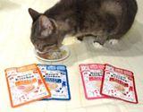 まるでスープ。グルメなネコちゃんも満足するキャットフード