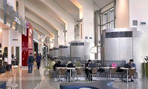 ロザンゼルス国際空港