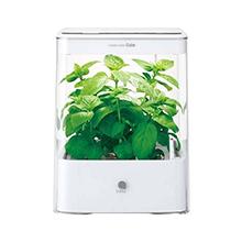 水耕栽培器 グリーンファーム キューブ