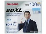 VR-100BR1 [BD-R XL 4倍速 1枚] 製品画像