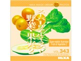 Mixa Image Library Vol.343 スーパーリアルイラスト 野菜・果実2