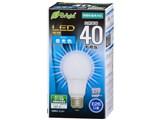 E-Bright LDA4D-G AG21 [�����F]