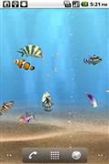 『スクリーンショット5』 aniPet海洋水族館ライブ壁紙(無料版)のアプリ画像