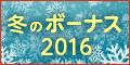 No.95 冬のボーナス2016 -いくらもらえる? 何に使う?-