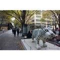 東京丸の内 (c) Getty Images