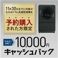10,000円キャッシュバックキャンペーン(VG)