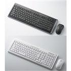 [TK-FDP002BK/WH] 2.4GHz帯DS-SS方式のワイヤレス日本語108キーボード&レーザーマウス (ブラック/