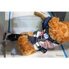 犬用シートベルト「ドッグハーネス」
