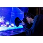 """ブルースカイ、ガラス越しの撮影時""""光の反射""""を抑えるレンズフード「ULH」など"""