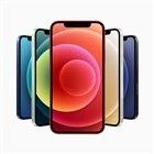 アップル「iPhone 12 mini」「iPhone 12」発表、「miniは世界最小の5Gスマホ」…10月14日