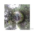 ダクション360S+ルーフキャリアアタッチメントによる撮影