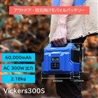 「Vickers 300S」