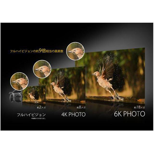 「6K PHOTO」イメージ