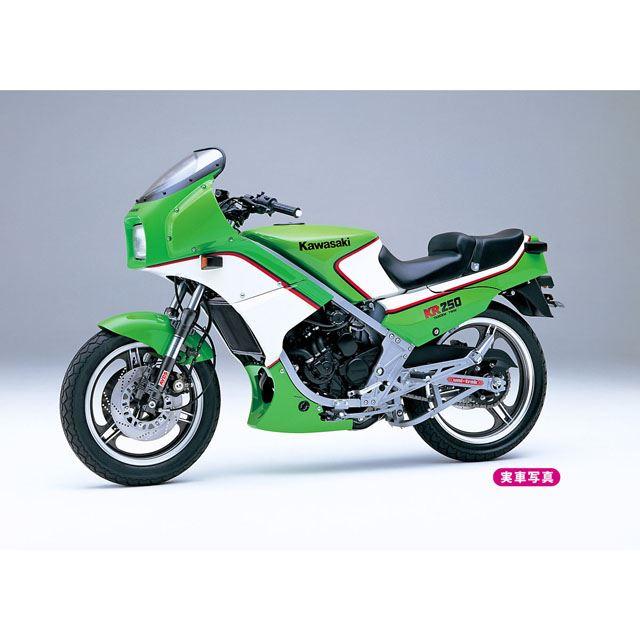 「カワサキ KR250(KR250A)」