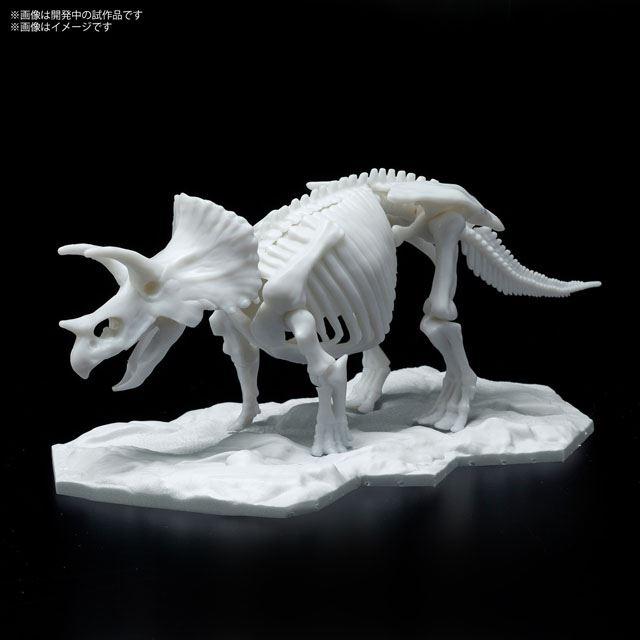 「恐竜骨格プラモデル 02 トリケラトプス」
