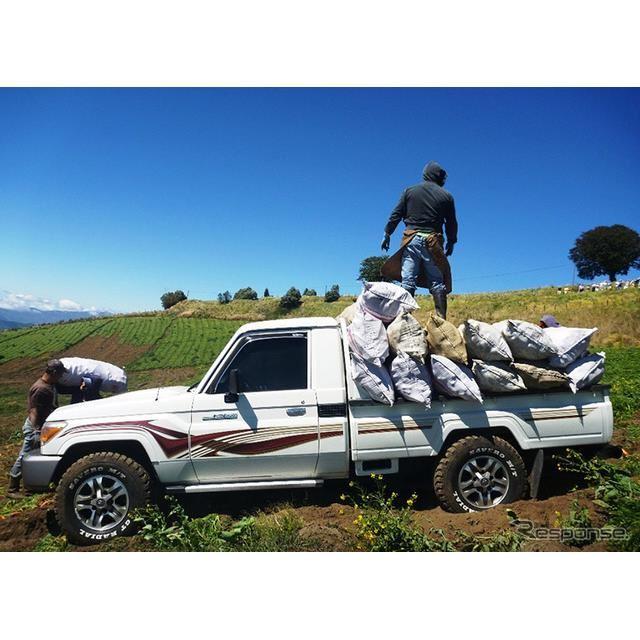 コスタリカの農場で活躍するランドクルーザー