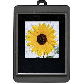 [PHOTTY-SQ15-BK] 1.5型CSTN液晶を搭載した小型のデジタルフォトフレーム(ブラック)。市場想定価格は1,980円前後