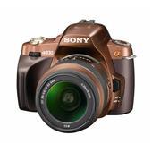 [α330] ヘルプガイド機能やチルト可動対応2.7型液晶モニターなどを備えたデジタル一眼レフカメラ(1020万画素)。市場想定価格は65,000円前後