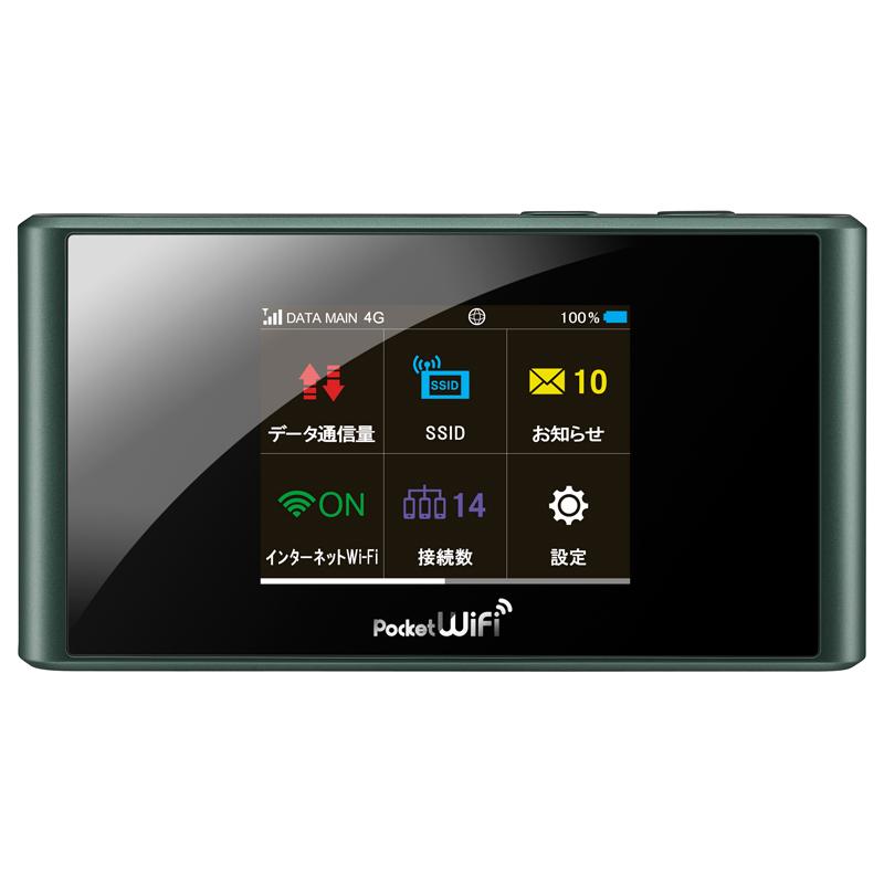 Pocket WiFi 303ZT