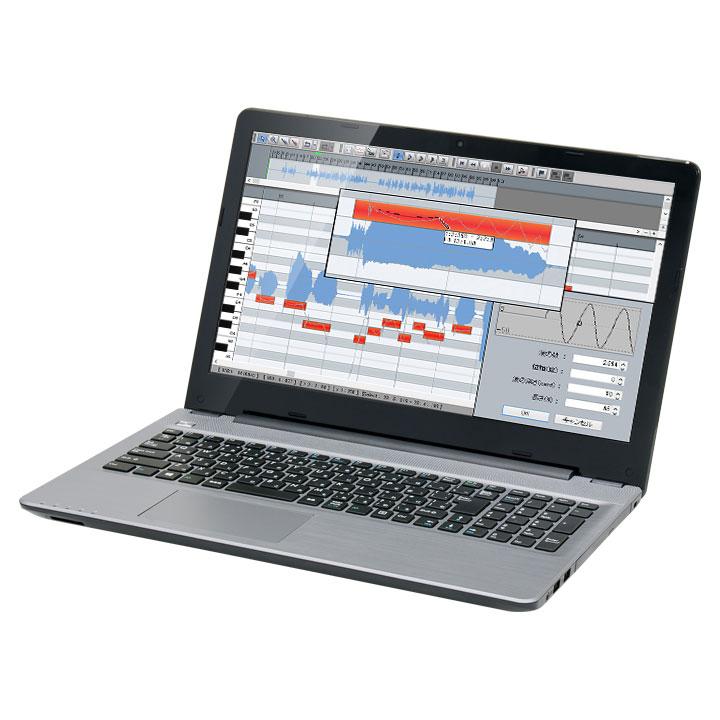 raytrek-DTM Singer Song Writer Lite 9 + VOCALOID 動作確認済みモデル DX10