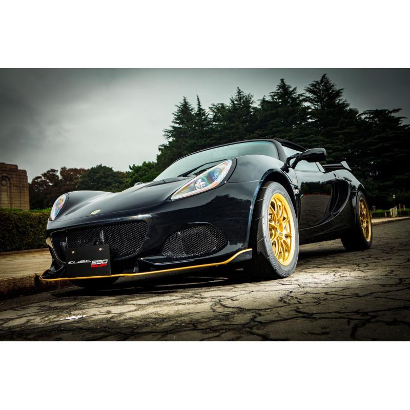ロータスの正規輸入元であるエルシーアイは2018年10月18日、特別仕様車「ロータス・エリーゼ カップ250 GP...