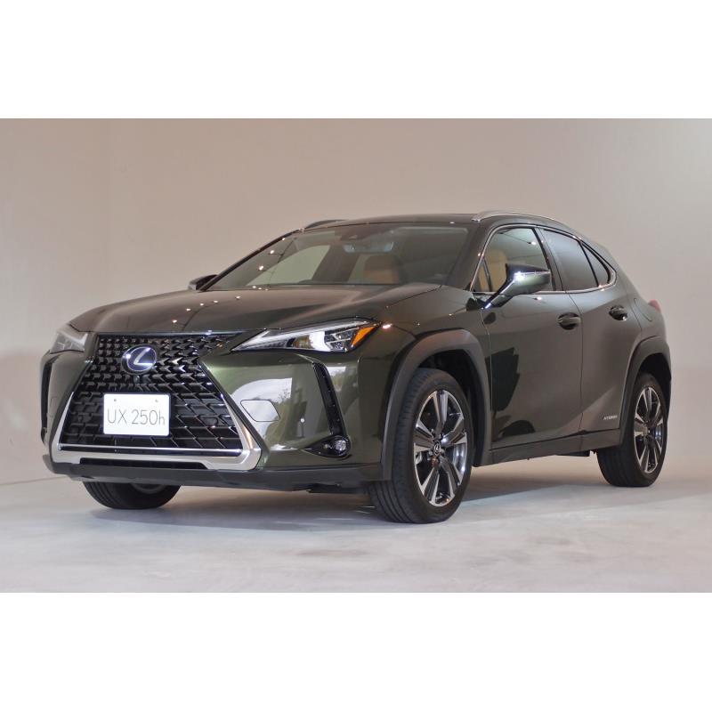 トヨタ自動車は2018年11月27日、レクサスブランドのコンパクトクロスオーバー「UX」を発表し、同日、販売を...