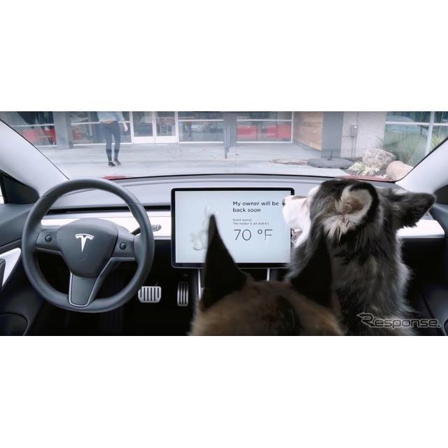 テスラは、新型EVセダンの『モデル3』(Tesla Model 3)に最新のアップデートを米国市場で行い、「ドッグモ...