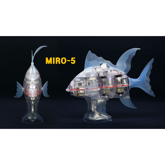 MIRO-5