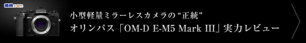 """小型軽量ミラーレスカメラの""""正統""""オリンパス「OM-D E-M5 Mark III」実力レビュー"""