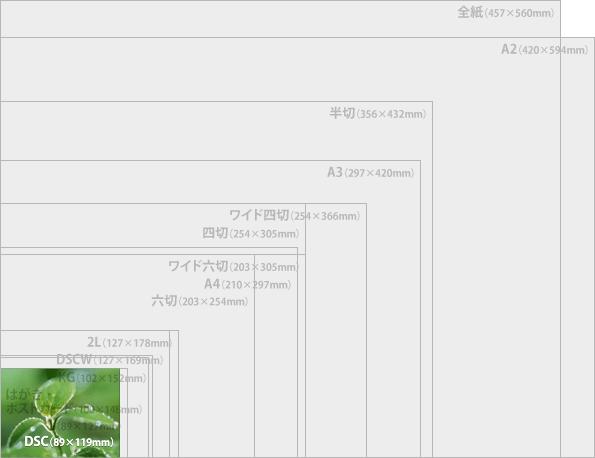 価格.com - プリントサイズ表 | ネットプリント・デジカメ ...