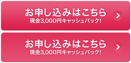 お申し込みはこちら 現金3,000円キャッシュバック!