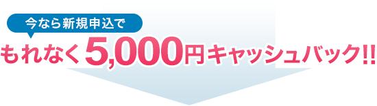 今なら新規申込でもれなく5,000円キャッシュバック!!